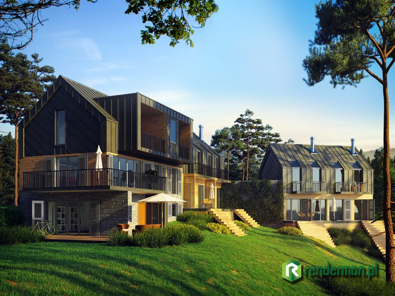 Mountain home rendering